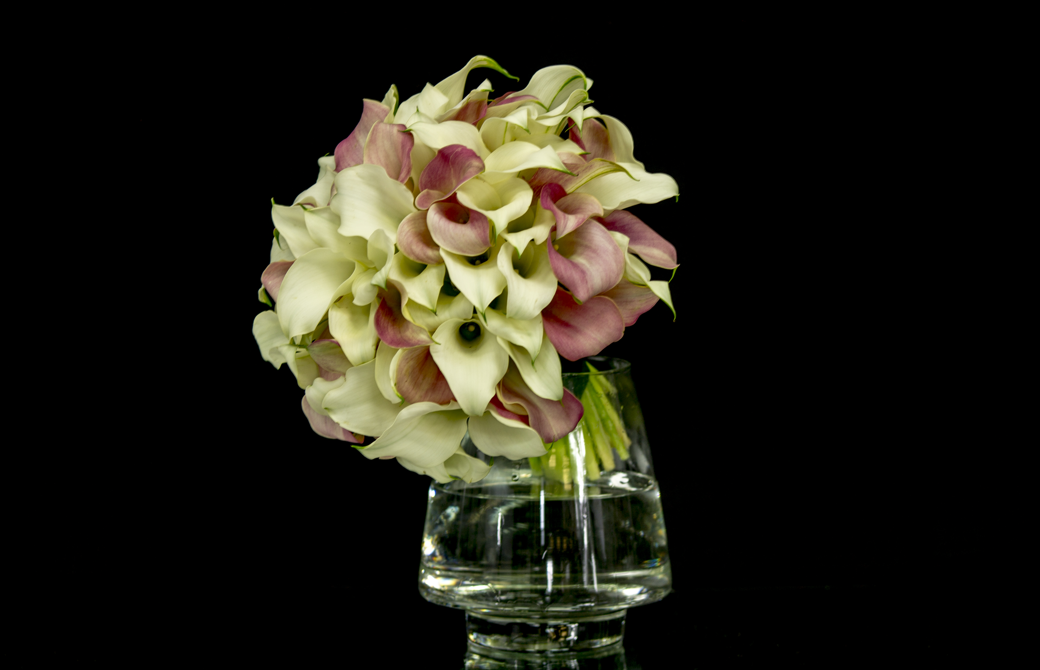 Calla Lilies In Clear Vase Miami Flower Delivery