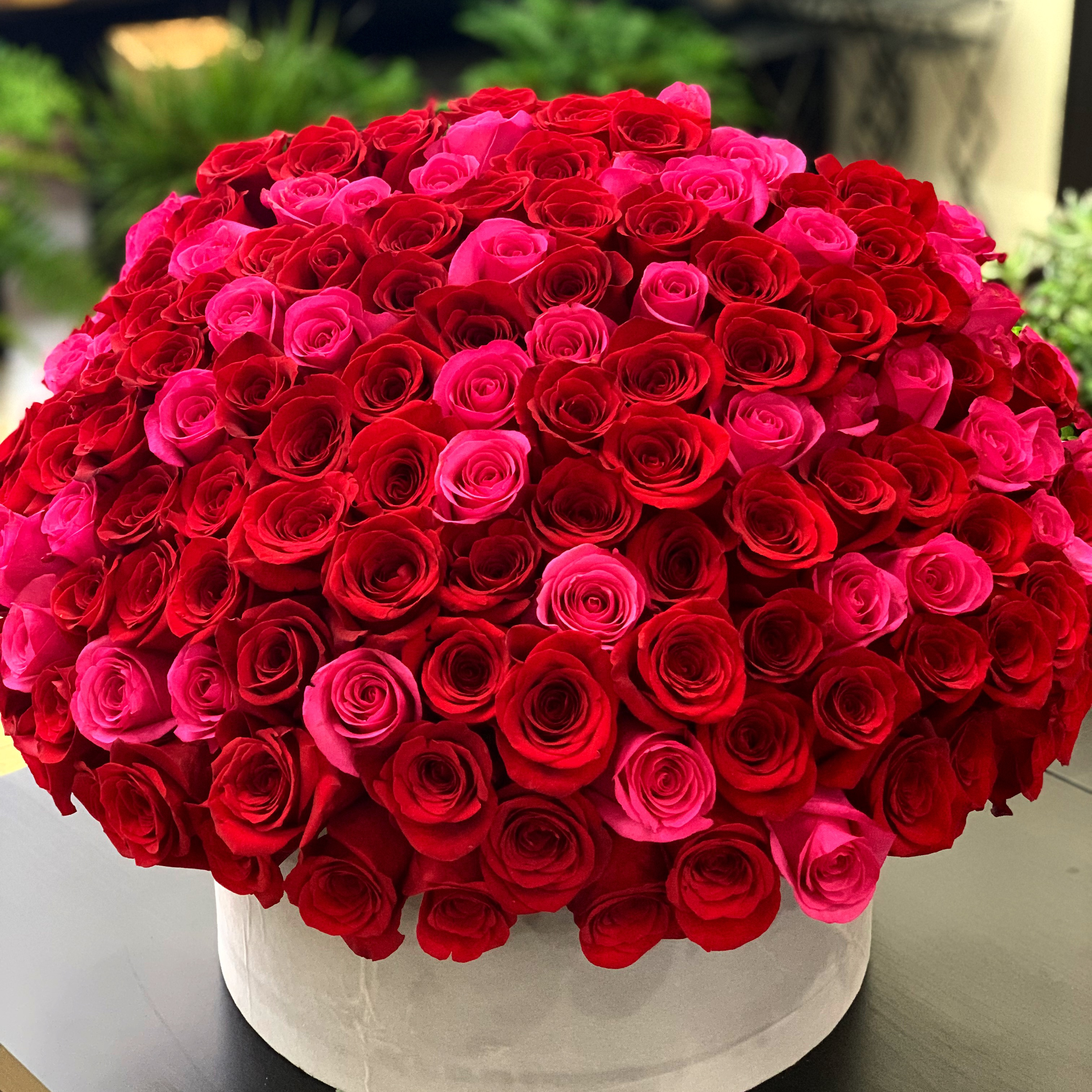 150 Red and Hot Pink Roses in a Box | Luxury Flowers Miami