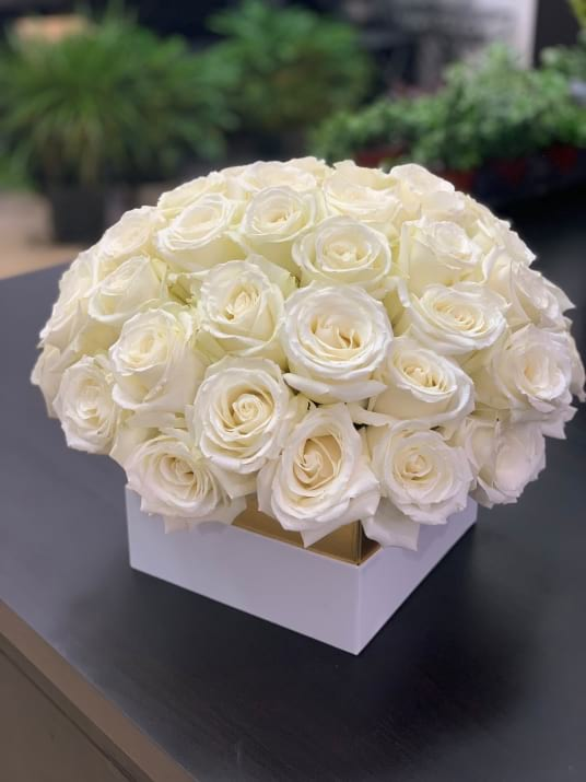 50 White Roses in Square Box