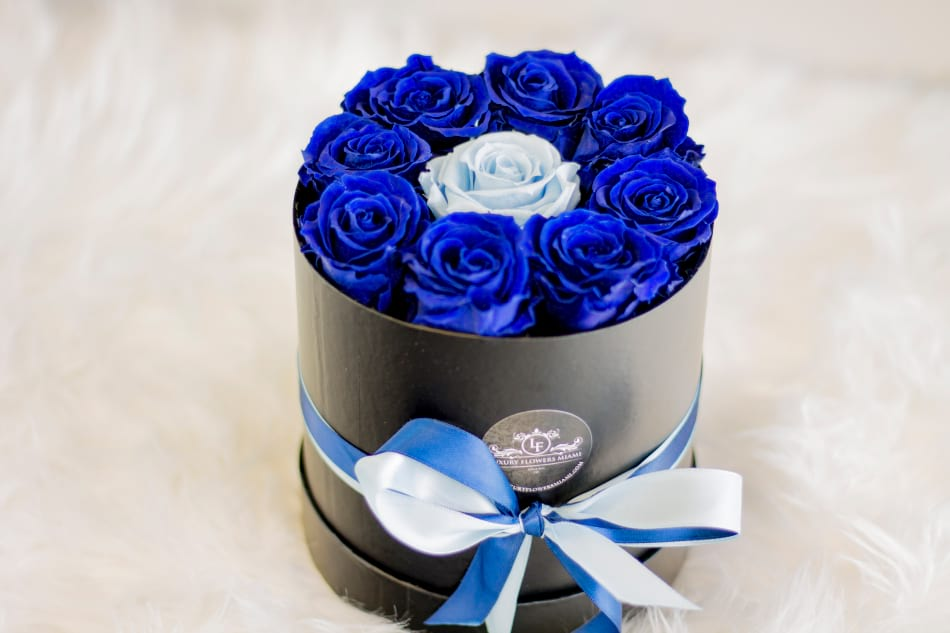 Luxury Preserved Royal Blue Roses in the box
