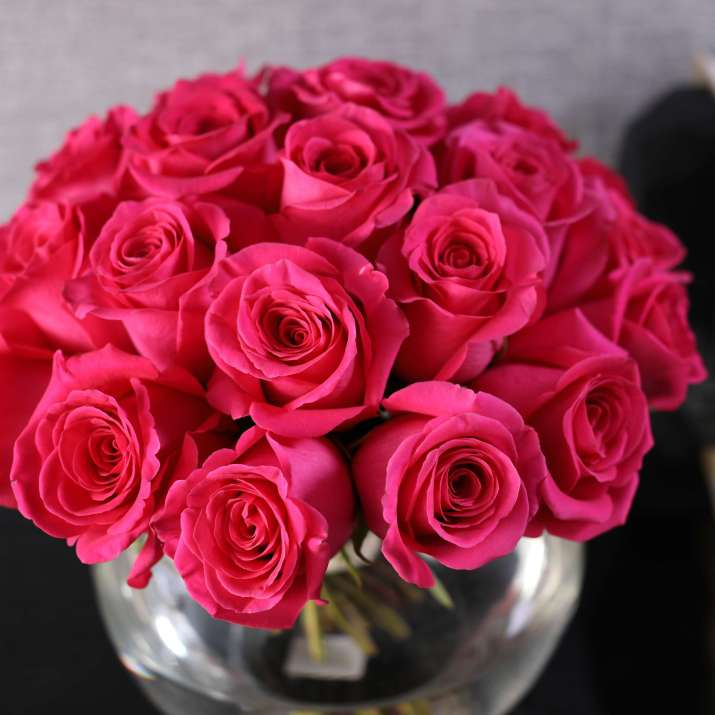 Two Dozen Hot Pink Roses Arrangement