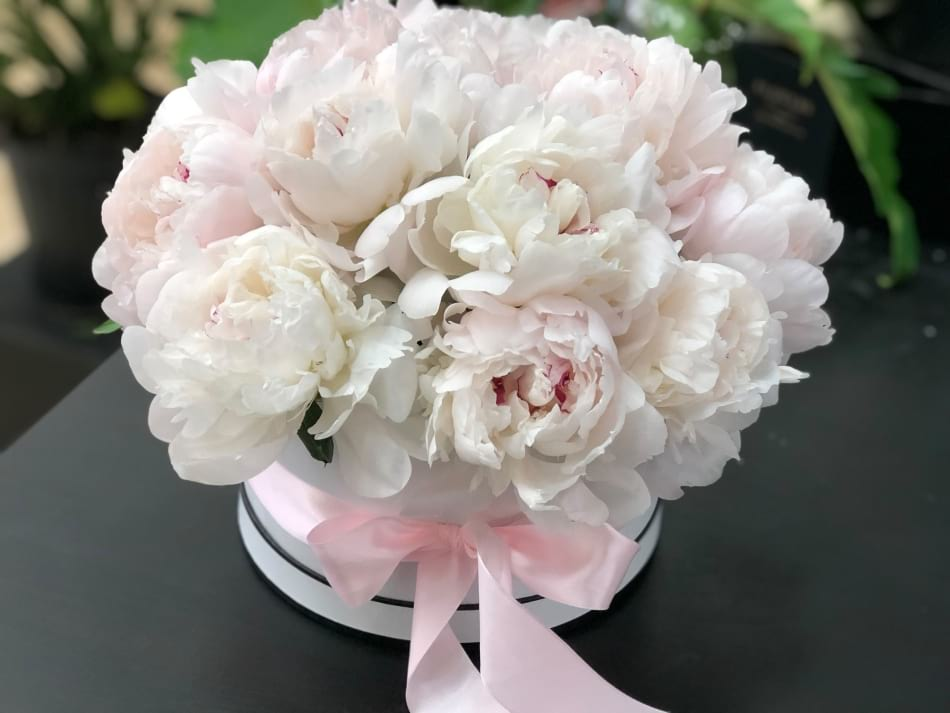 Premium  Box with White Peonies