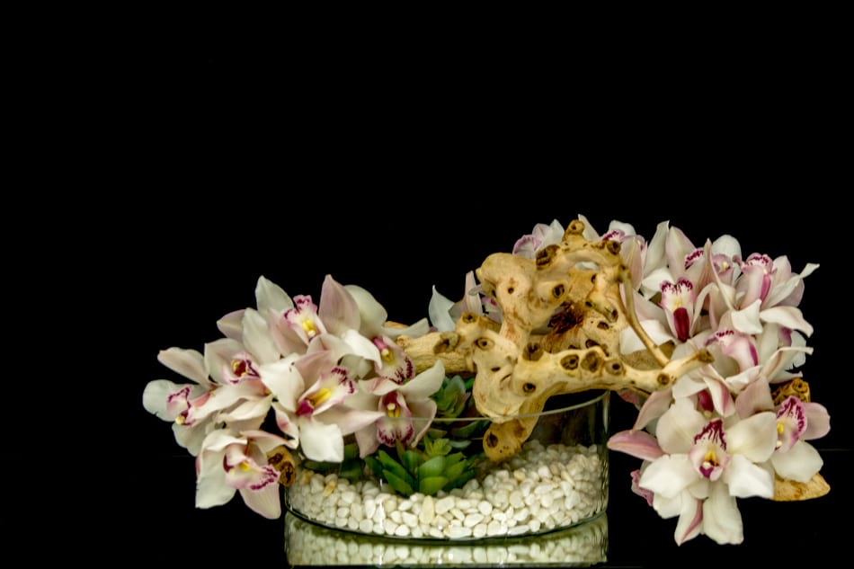 Luxurious Orchids Design in large vase
