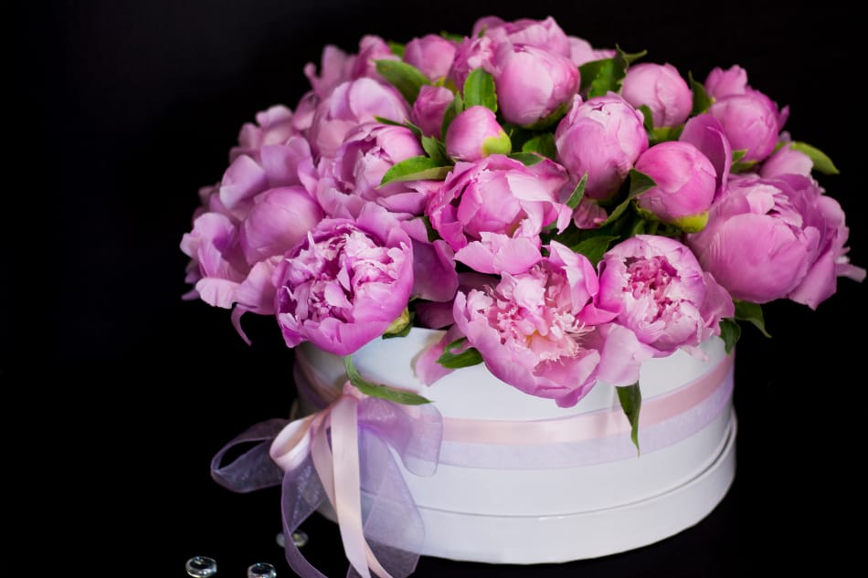 Luxurious Box with Peonies