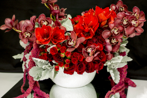 Premium Flower Design in Red Color