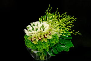 Stylish Flower Design in lemon and white colors