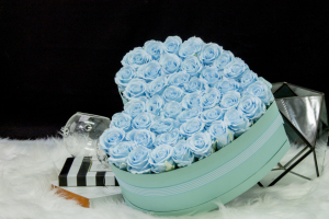 Eternal Baby Blue Roses in Heart Box